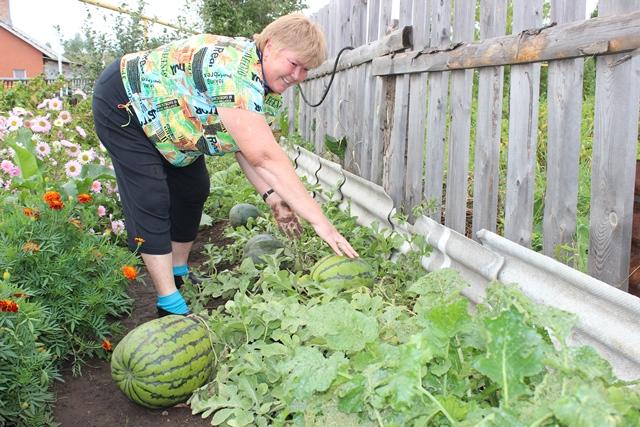 Как сделать кашпо своими руками для сада цветов