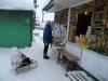 Продукты в Кунгуре: где дешевле?
